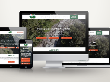 Puntzan Canopy - Website Design