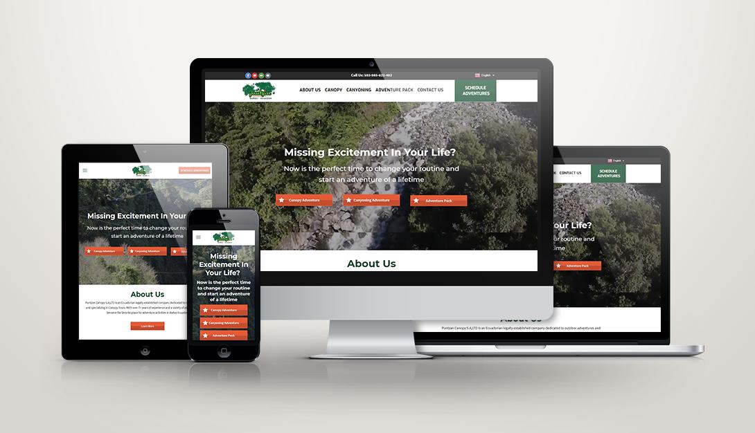 Puntzan Canopy Web Design