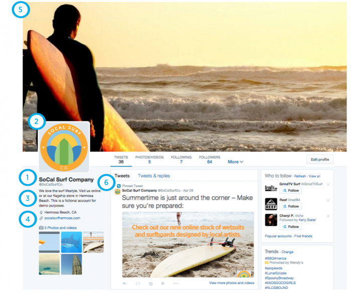 Twitter_profile_example
