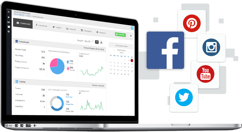 website visibility report - social media analytics